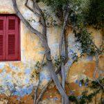 sandra freijomil-grecia nosaltres- diari segre